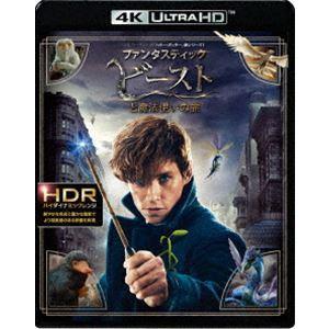 ファンタスティック・ビーストと魔法使いの旅<4K ULTRA HD&2D ブルーレイセット> [Ultra HD Blu-ray]|dss