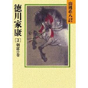 徳川家康 3|dss