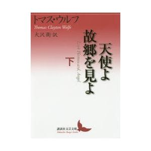 本 ISBN:9784062903516 トマス・ウルフ/〔著〕 大沢衛/訳 出版社:講談社 出版年...