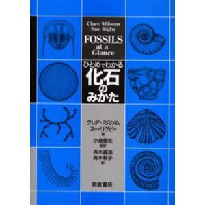 ひとめでわかる化石のみかた|dss