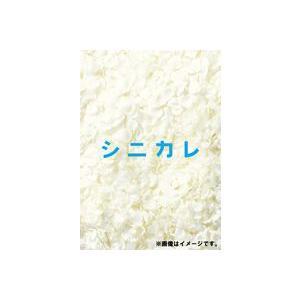 シニカレ完全版 DVD-BOX [DVD]|dss