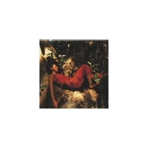 MISIA / Mother Father Brother Sister [CD]|dss