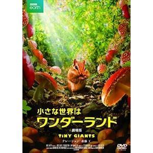 小さな世界はワンダーランド/劇場版 [DVD] dss