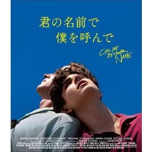 君の名前で僕を呼んで [Blu-ray]|dss