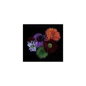 雨風食堂 / 花と弁 [CD]|dss