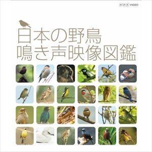 日本の野鳥 鳴き声映像図鑑 [Blu-ray]