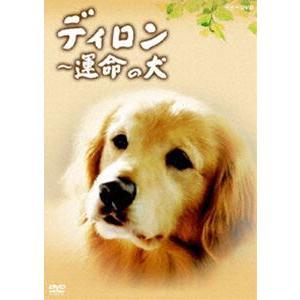 ディロン 運命の犬 [DVD]|dss