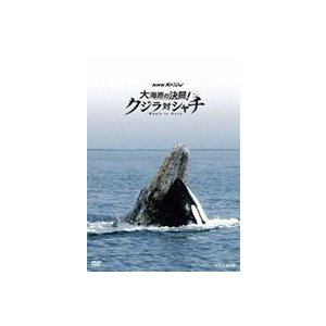 NHKスペシャル 大海原の決闘! クジラ対シャチ [DVD]