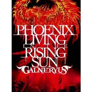 スプリングCP オススメ商品 種別:DVD GALNERYUS 解説:2011年に行なわれたツアー「...
