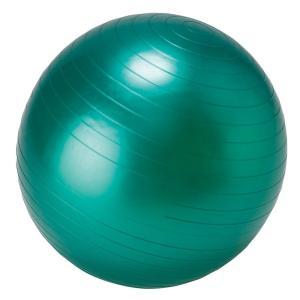 LEZAX(レザックス) IDEAL BODY フィットネスボール 55cm IBFG-5758|dstyleshop