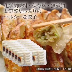 原田食品 原田屋 無添加 生餃子 120個