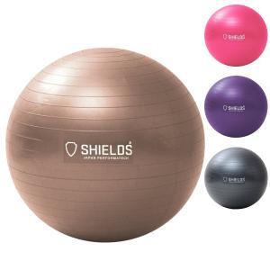 バランスボール 体幹トレーニング SHIELDS(シールズ) ジムボール65 アンチバーストタイプ ハンドポンプ付 SBAL-65|dstyleshop