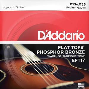 D'Addario Flat Top Phosphor Br...