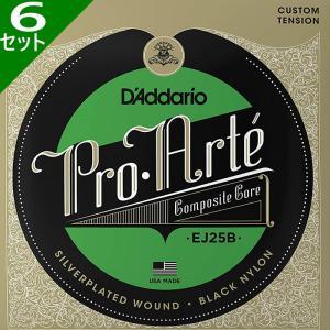 6セット・D'Addario Pro Arte Compos...