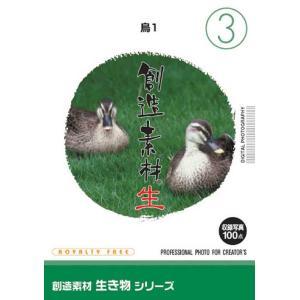 創造素材 生き物シリーズ[3]鳥1|dtp