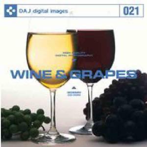 【特価】DAJ 021 WINE & GRAPES|dtp