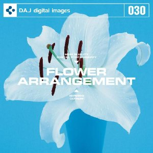 【特価】DAJ 030 FLOWER ARRANGEMENT|dtp