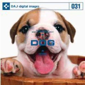【特価】DAJ 031 DOG|dtp