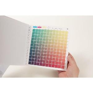 DICセルリング型カラーチャート 第4刷 色見本帳 プロセスCMYKカラーチャート 追跡可能メール便可 送料257円|dtp|04