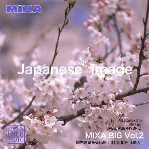 MIXA BIG vol.002 Japanese Image|dtp