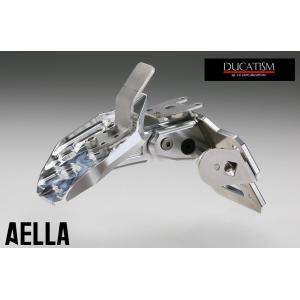 アエラ DUCATI Panigale V4 ショートナンバープレートホルダー パニガーレV4 AELLA ドゥカティ AE-74021|ducatism