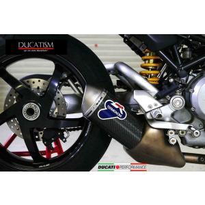5/8 イタリア在庫有 テルミニョーニ ショート MonsterS4R/S4RS テスタストレッタ カーボン サイレンサー DUCATI モンスター スリップオン マフラー TERMIGNONI|ducatism