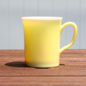 【在庫限り】 エコスターマグカップ(クリアイエロー)|duni