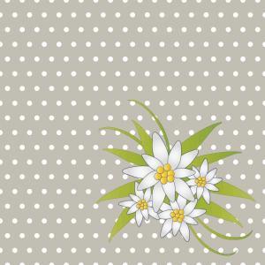 デザインナプキン 3PLY 4面折 (エーデルワイスグレー) 33x33cm 20枚入り|duni