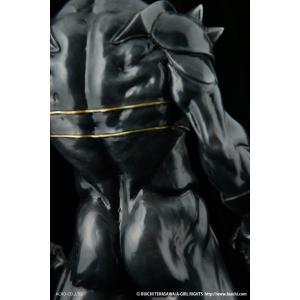 1/6スケール ソフビ製塗装済完成品ブラックソード・ゼロ|dunk-store|04