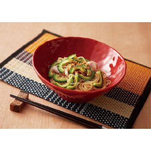 / 赤釉手びねり麺鉢 /和食器|duralex