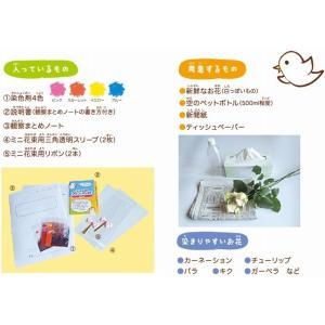 【20%OFF応援価格】フラワーパレットSTAY HOME4色セット(定形外郵便不可) dyestuff-chameleon 02