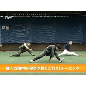 DVD クリーチャートレーニング〜生き物の動作が選手の体を活性化させる〜 田中昌彦 フィジカル 体幹 バランス