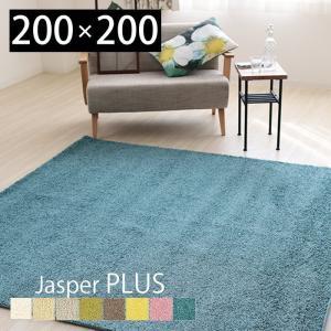 ラグ カーペット 絨毯 ウイルス対策 抗ウイルス 抗菌 消臭 防ダニ 日本製 手洗い可 床暖房対応 シンプル 正方形 200×200 人気 プレーベル ジャスパープラス|e-alamode-ys