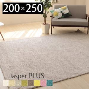 ラグ カーペット 絨毯 ウイルス対策 抗ウイルス 抗菌 消臭 防ダニ 日本製 手洗い可 床暖房対応 シンプル 長方形 200×250 人気 プレーベル ジャスパープラス|e-alamode-ys