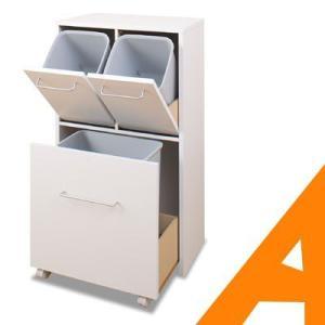 ゴミ箱 ごみ箱 ミュゲダストボックス3分別 SE-0001|e-alamode