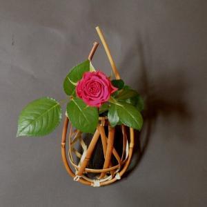 千島笹 掛け花籠 茶花|e-basket