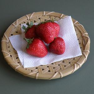 真竹 鉄線編み 小皿  銘々皿|e-basket