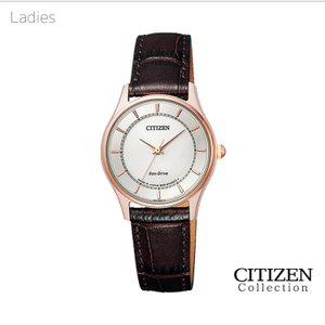 ペアウォッチ ペアセット Citizen Collection ペア 腕時計 革バンド シチズンコレクション BJ6482-04A/EM0402-05A SPAIR0011 e-bloom 03