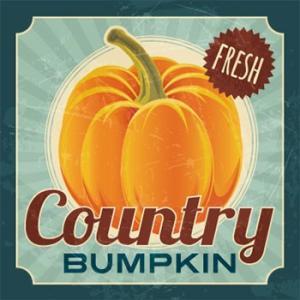 ROCKETFUEL Country BUMPKIN  - リキッド (10ml) リキッド 電子タバコ VAPE|e-bms-store
