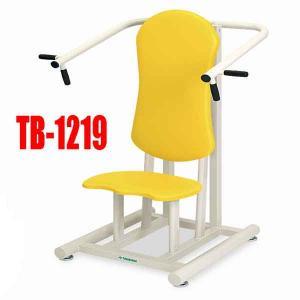 高齢者用リハビリマシン ショルダープレス2 TB-1219 肩甲骨や両腕の筋力アップ 日本製3年保証 e-bodyfitness
