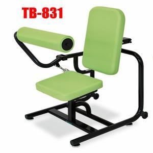 高齢者用リハビリマシン油圧式 アブドミナルTB-831腰痛改善 日本製 3年保証 e-bodyfitness