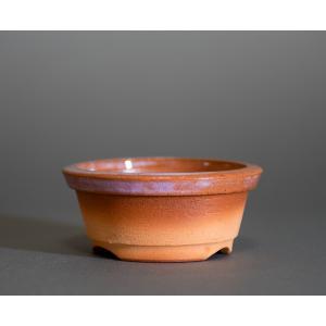 駄温鉢 國井正子 駄温盆栽鉢 da04 e-bonsai