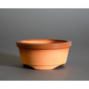駄温鉢 國井正子 駄温盆栽鉢 da08 e-bonsai