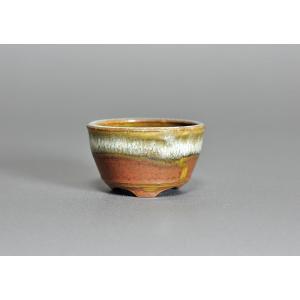 豆盆栽鉢 黄瀬戸マット釉丸盆栽鉢  小さな盆栽鉢 h3522|e-bonsai