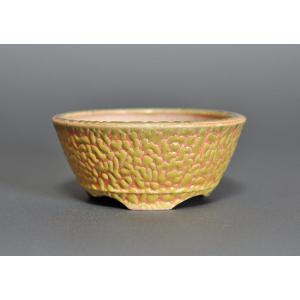 盆栽鉢 黄釉 丸盆栽鉢 h3606|e-bonsai