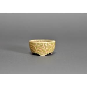 豆盆栽鉢 黄釉丸盆栽鉢 小さな盆栽鉢 h3610|e-bonsai