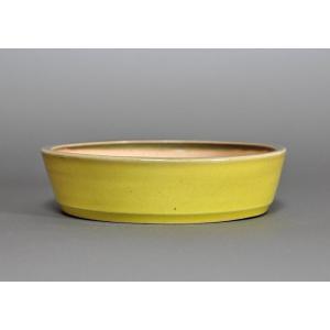 盆栽鉢 黄釉 丸盆栽鉢 h3643|e-bonsai