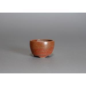 豆盆栽鉢 黄瀬戸マット釉丸盆栽鉢  小さな盆栽鉢 p0079|e-bonsai
