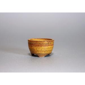 豆盆栽鉢 黄瀬戸マット釉丸盆栽鉢  小さな盆栽鉢 p0134|e-bonsai