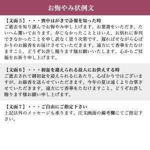 【送料無料】進物線香 美麗香 2本入【包装無料】【のし無料】|e-butsudanya|08